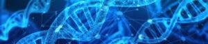 Genetics & the Origin of Autism