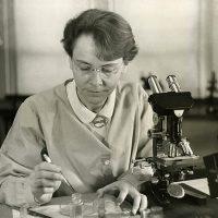 733px-Barbara_McClintock_(1902-1992)_shown_in_her_laboratory_in_1947-1